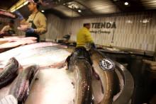 Torskefiskkonferansen 2016