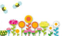 Svensken behöver lära mer om binas betydelse för maten