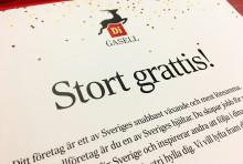 Skandinaviska Områdesskydd ett Gasellföretag