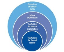 Role of social partners in preventing trafficking of labour