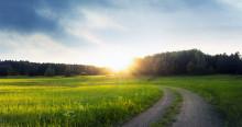 Bioenergin räcker till de ökande behoven