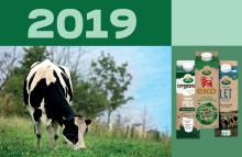 Brändit ja muutos tuottivat Arla Foodsille vahvoja tuloksia vuonna 2019