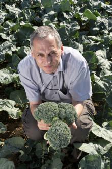 Superbroccolin uppmärksammas internationellt!