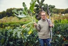 Danmarks grönsakskung släpper svensk kokbok om gröna proteiner