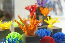Korallforskning får form i utställning på Svenskt Tenn