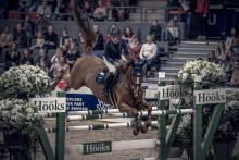 Nytt 5-års avtal mellan Gothenburg Horse Show och funktionärsfavoriten Hööks Hästsport