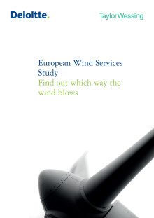 European Wind Service Study 2012