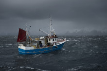 Best month ever for fresh cod from Norway
