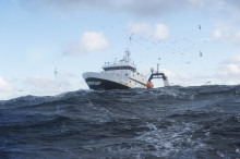 Norway´s seafood exports total NOK 69 billion year-to-date