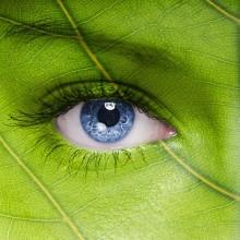 SEE Norrbottens hållbarhetsvecka- Hållbar vardag