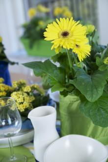 Blomsterfrämjandet dukar till fest!