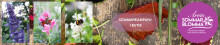 Årets Sommarblomma 2020 presenteras 28 maj 10.00