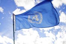 Göteborg flaggar med FN-flaggor under NMR:s demonstration