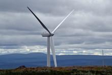 Zoégas satsar på vindkraft för att nå målet om 0-utsläpp