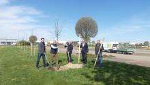 Fendt-Caravan pflanzt Bäume