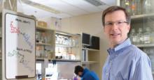 Scheelepriset 2021 till Yale-professorn Craig Crews