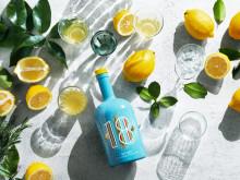 BLOSSA 18 RESER TILL AMALFIKUSTEN - Med smak av Limoncello och medelhavskryddor
