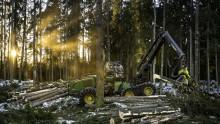 Skogsbrukets lönsamhet föll 2019