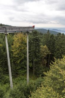 Schmetterling Destinationen - Bayerischer Wald: Dorado für Gipfelstürmer, Genießer, Sportler und Naturliebhaber