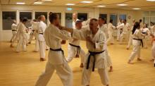 Alingsås karateklubb får bidrag till nytt golv