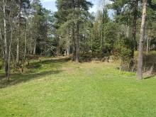 Vi legger nytt gress på Vestli