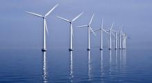 Går sammen om å styrke bruken av havets ressurser