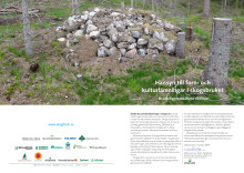 Riktlinjer för hänsyn till forn- och kulturlämningar i skogen