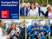 Långsiktigt arbete gör Wihlborgs till en av Sveriges bästa arbetsplatser