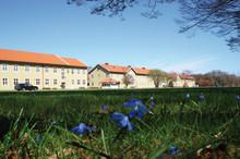 Elva utvalda att bygga bostäder i Sege Park