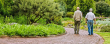 EXPERT COMMENT: Walking can relieve leg pain in people with peripheral artery disease