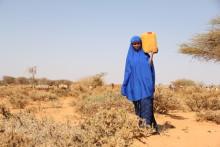 Uteblivna regn för Somalia allt närmare svältkatastrof