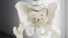 Operationen an Hüfte und Knie vermeiden: KKH kooperiert mit FPZ