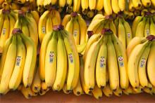 Greenfood utmanar i den klassiska fruktdisken - lanserar varumärket Daily Greens i bananhyllan