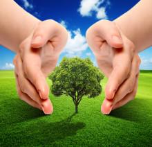 Miljövinster går ofta hand i hand med våra Sigfox-lösningar