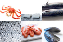 Norwegian seafood exports grew by NOK 2.7 billion in Q1 2017
