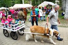 Tag der offenen Tür im Kinderhospiz: Bärenherz-Familienfest lockt rund 1.000 Besucher in den Kees'schen Park