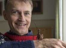 Alla insekter i Sverige kartläggs med den senaste DNA-tekniken