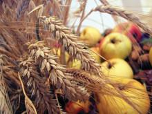 Ta tåget till höstens roligaste matupplevelser