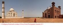 Sony World Photography Awards 2011: Die Sieger des Offenen Wettbewerbs stehen fest