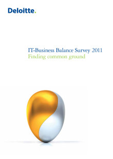 IT-Balance Survey 2011