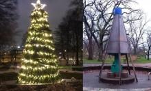 Bonusgran i Stadsträdgården efter förslag från medborgare