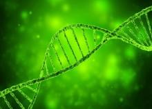 Auf den Spuren des Genoms - Schatzsuche in Irland