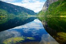 Miljön prioriteras ner av landets småföretagare