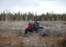 Filmer ska få oss att prata om skogens roll