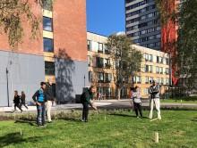 Åpning av helt nye, grønne og sosiale uteområder på Kringsjå Studentby