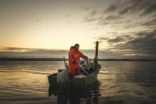 Frisch auf den Tisch: mit Fischer Rolf Meier auf dem Bodensee