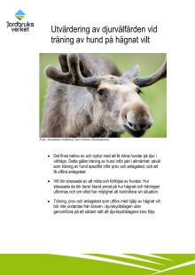 Rapport Utvärdering av djurvälfärden vid träning av hund på hägnat vilt