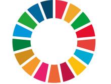 Utvecklingsfinansiärer satsar på förnybar energi i Afrika
