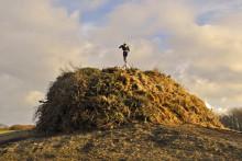 Feuriges Kulturerbe: Biikebrennen auf Sylt