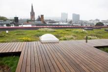 Se frokostmøtet «Kan vi bygge oss til mer natur i byen?» live